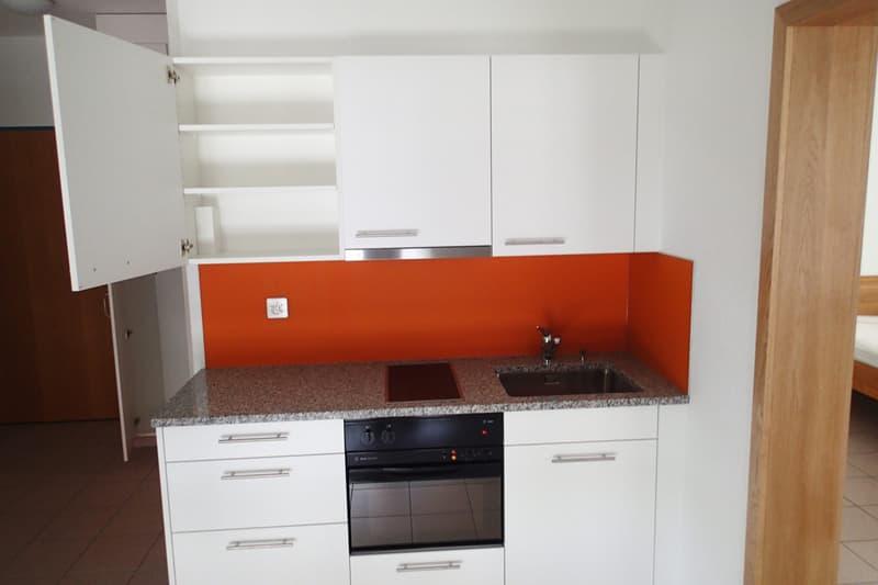 1.5 Zi-Wohnung, möbliert in Remigen (1)