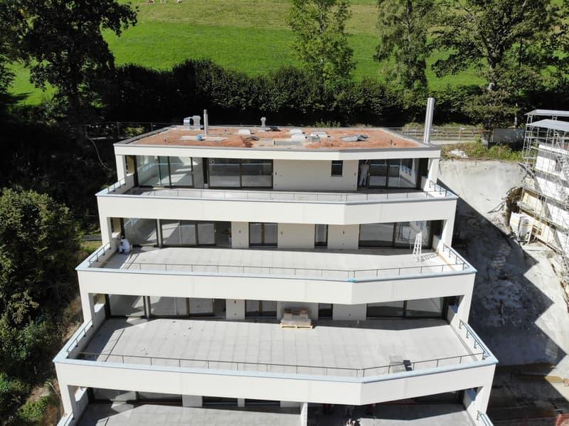 Exklusives Terrassenhaus (2)