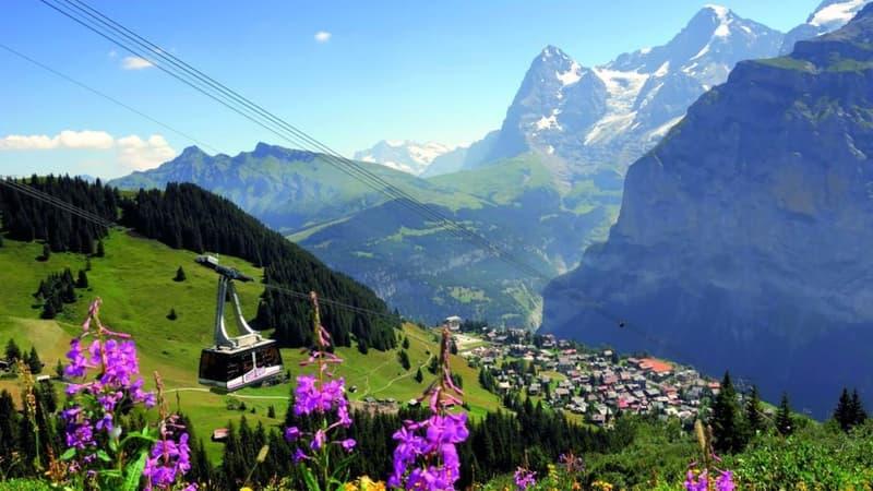 Bekanntes 3* Hotel mitten in der Jungfrau Region / 295 (1)