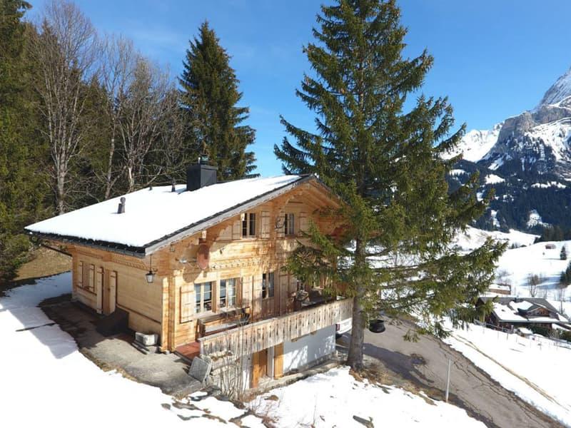 Schickes Chalet mit atemberaubender Aussicht auf die Berge/Chic chalet (1)
