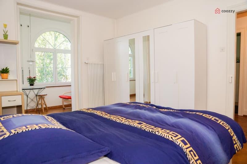 Templum  * - recently modernized apartment cosy style - gemütliche neu renovierte Altbau-Wohnung (1)