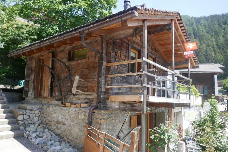 Einzigartiges 2.5 Zimmer-Chalet in den Bergen ! (1)
