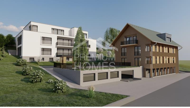 Neubau 5.5 Zimmer Attika mit Terrasse (2)