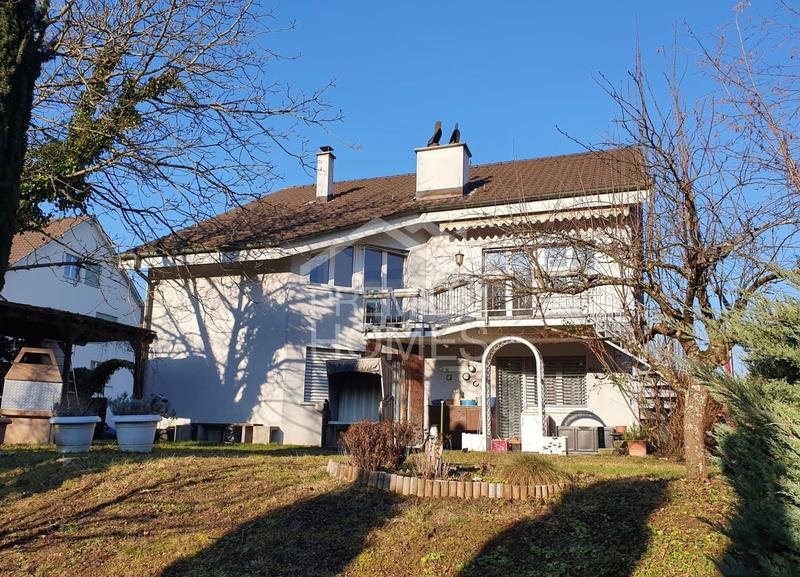 Grosses 2-Familienhaus mit 2 Garagen (1)