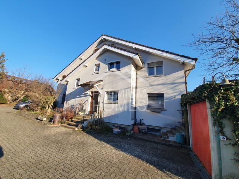 Grosses 2-Familienhaus mit 2 Garagen (2)