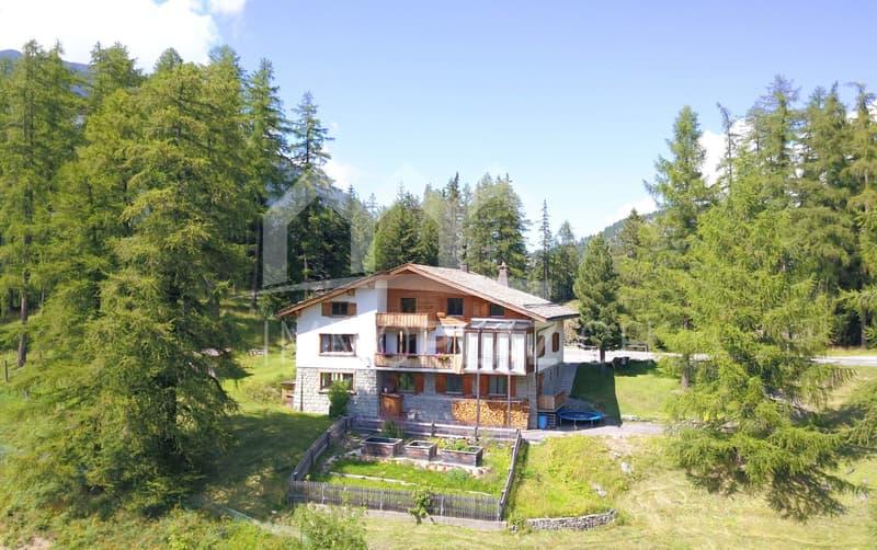 Charmantes Mehrfamilien- Chalet im Herzen von Graubünden (1)