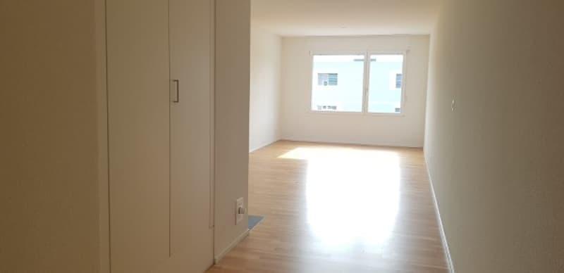 Appartement de 4.5 pièces dans quartier Sud de Delémont (2)