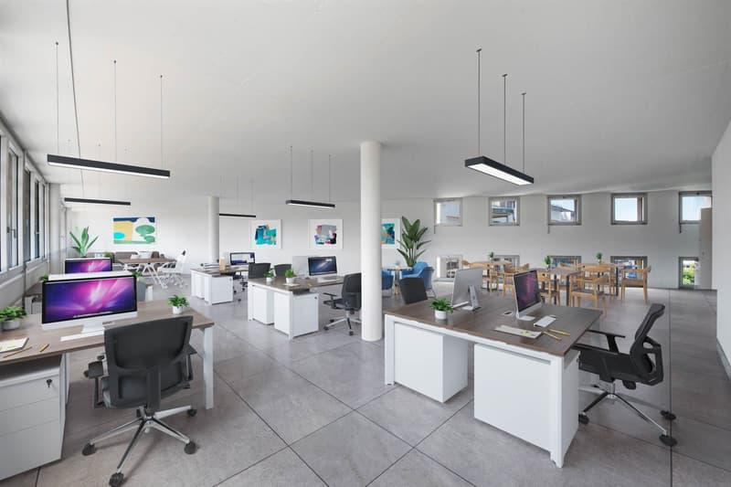 Binzmühlepark - Mehr Raum für Spitzenleistungen! (2)
