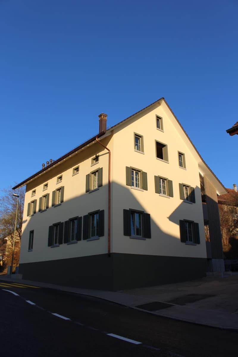 Repräsentatives Mehrfamilienhaus im Herzen des Zürcher Weinlandes (1)