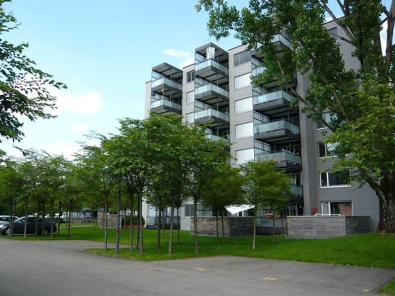Wohnung im Zentrum von Dübendorf (1)
