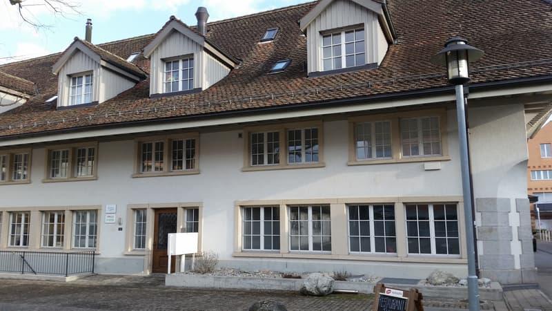 Über den Dächern von Langenthal! (1)