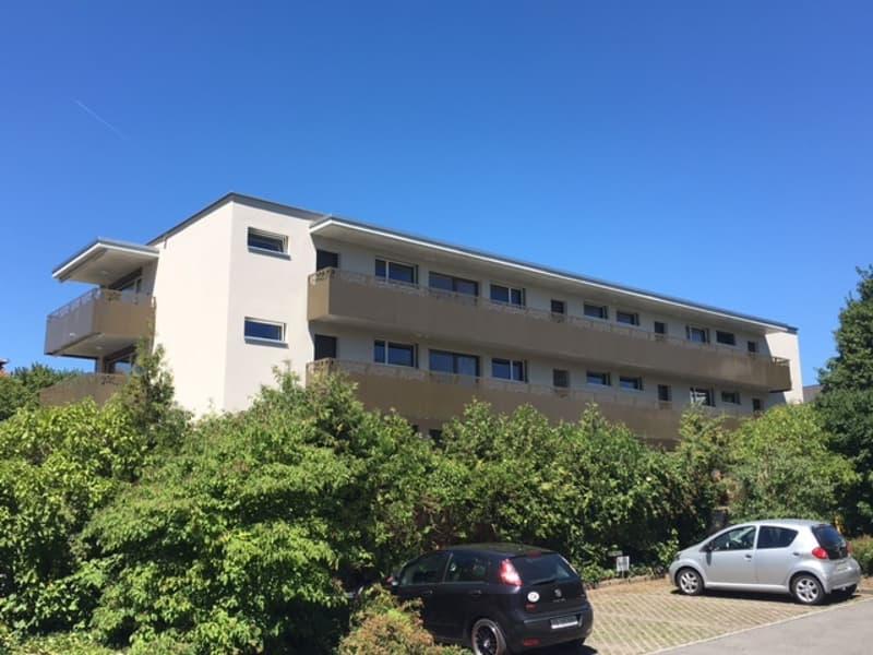 moderne und helle 3.5-Zimmerwohnung (2)