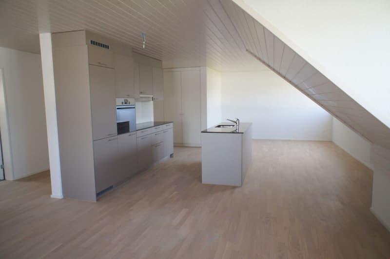 2.5-Zimmer-Dachwohnung (1)