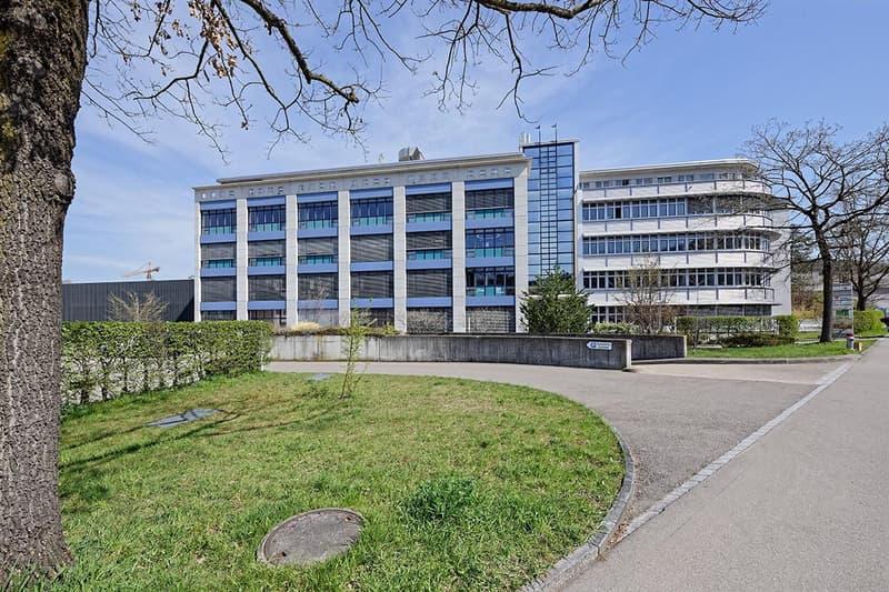 helle Büroräume (2)