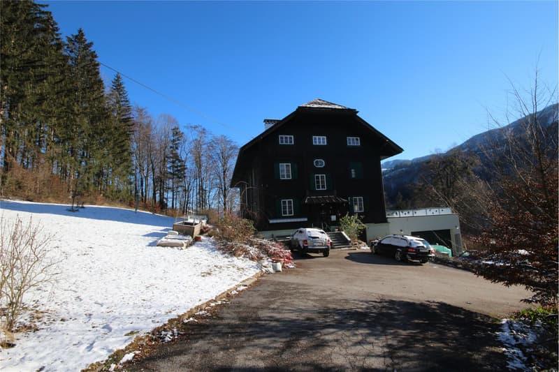 Herrenhaus in Ternberg - Klassik trifft Moderne (2)