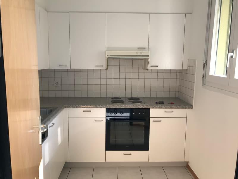 Lamone appartamento 3.5 locali con terrazza (10)