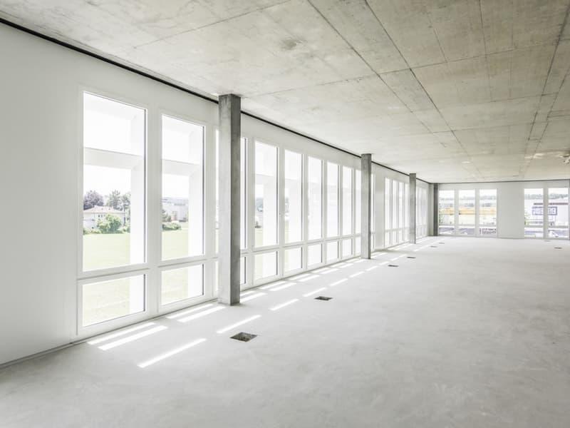 Bis zu 1'000 m2 Bürofläche - in nur 6 Mt. für Sie ausgebaut (2)