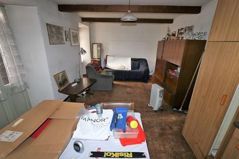 2-Familienhaus mit Rustico und Garten / casa plurifamiliare con rustico (2)