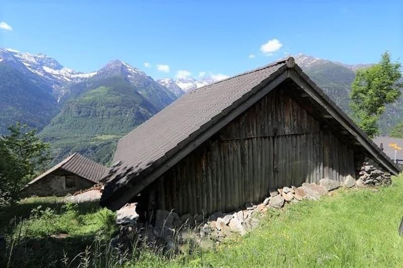 3-Zimmer-Rustico mit grossem Wiesland und Wald / Rustico di 3 locali con prato e bosco (2)