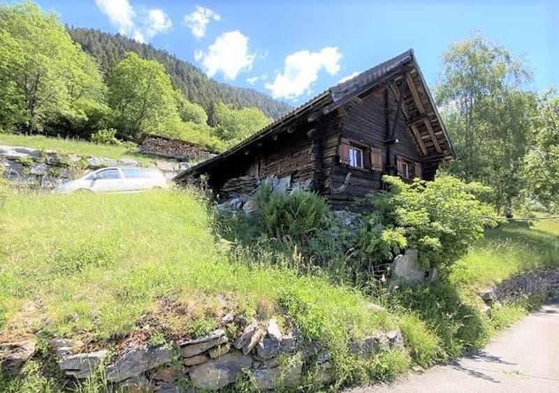 3-Zimmer-Rustico mit grossem Wiesland und Wald / Rustico di 3 locali con prato e bosco (1)