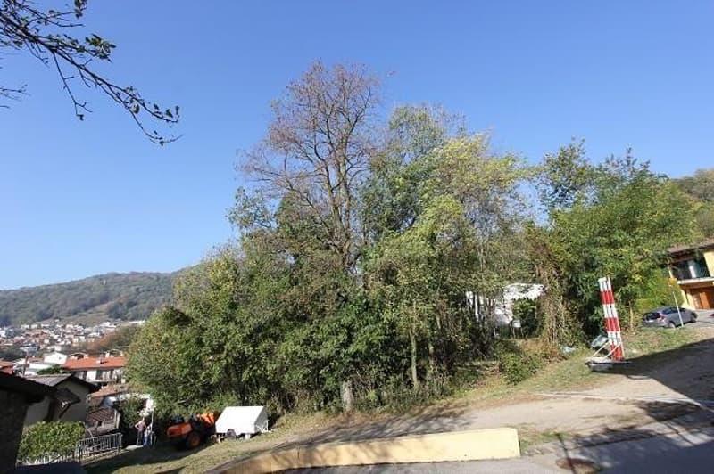 Baulandgrundstück von 1050m2 mit Aussicht / terreno edificabile di 1050m2 con bella vista (2)