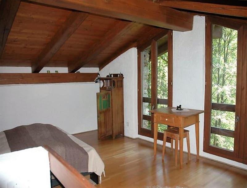 3 1/2-Zimmer-Rustico an Alleinlage in Waldlichtung / rustico di 3 1/2 locali da solo nella Natura (2)