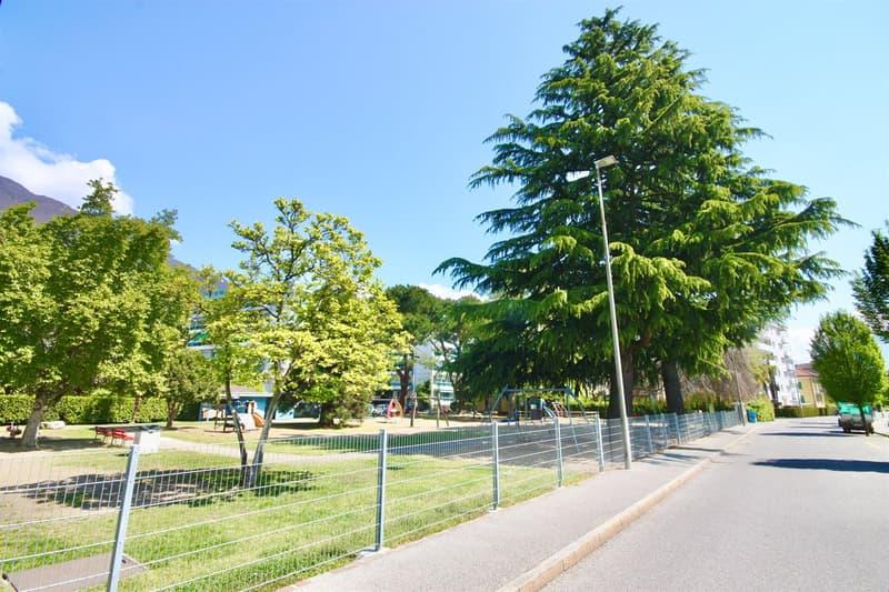Parco - Park