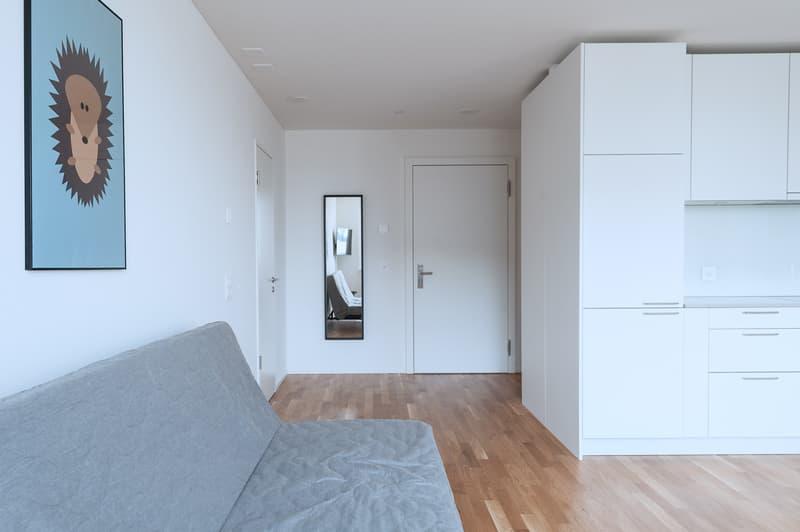 Moderne und möblierte Wohnungen mit 2.5 Zimmern und Balkon (1)