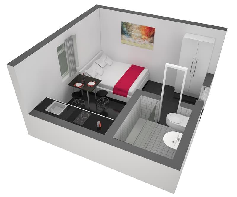 Charmantes möbliertes Studio für zwei Personen im Zentrum der Neustadt (8)
