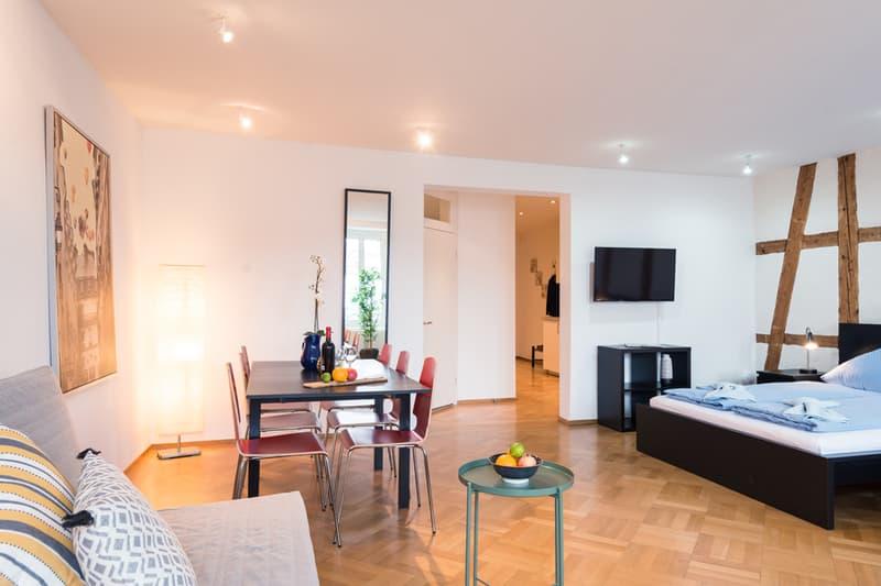 Helles 3.5-Zimmer Apartment bei Kappellbrücke (2)