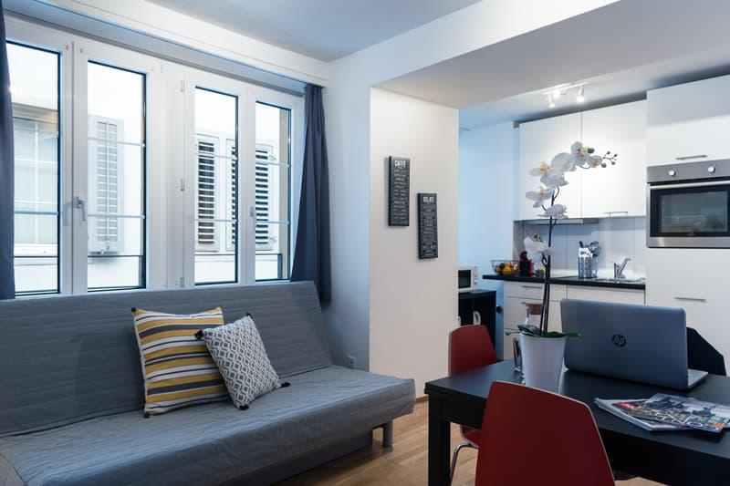 Moderne 2-Zimmerwohnung in Luzerner Altstadt (1)