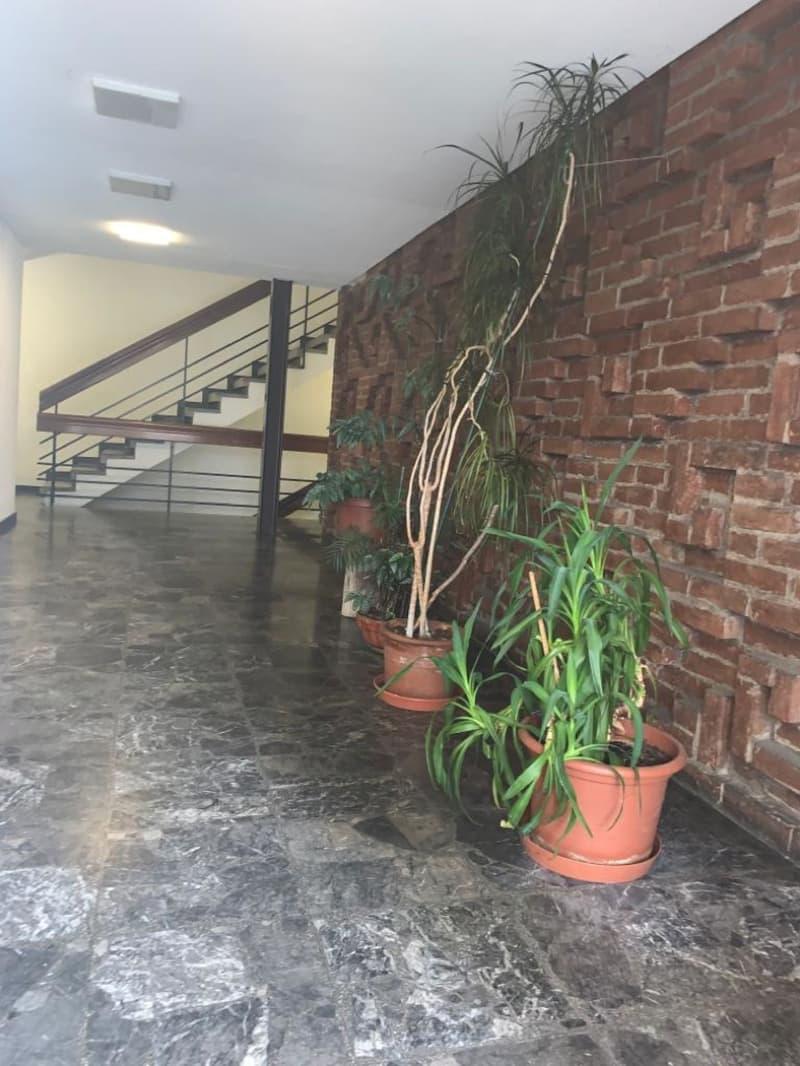 Bellinzona | Appartamento spazioso | (2)