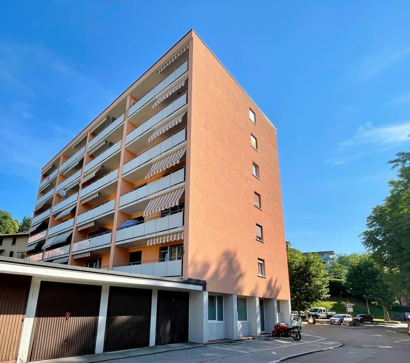 Savosa bell'appartamento rinnovato (1)