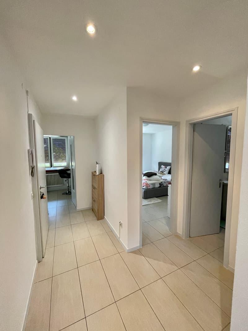 Savosa bell'appartamento rinnovato (2)