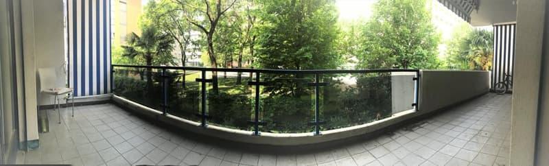 Grazioso appartamento 3.5 a Lugano (1)