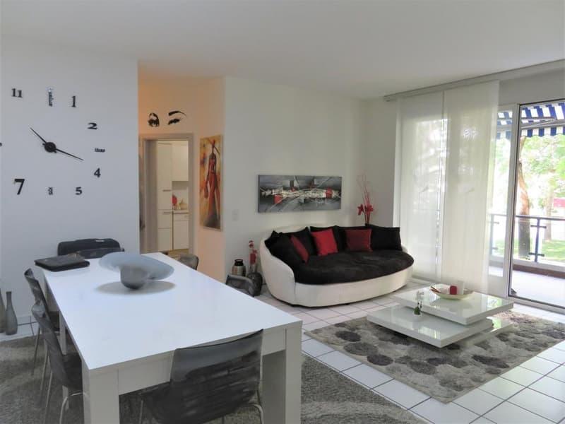 Grazioso appartamento 3.5 a Lugano (2)