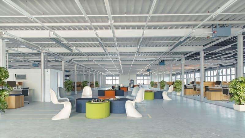 Grosszügiges Büro mit ca. 335 m² zu vermieten (2)