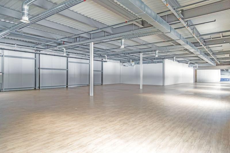 Büro-/Gewerbeflächen zu vermieten 55m² bis 1'671m² (1)