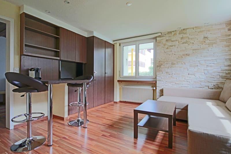 2 Zimmer Serviced Business Apartment (1)