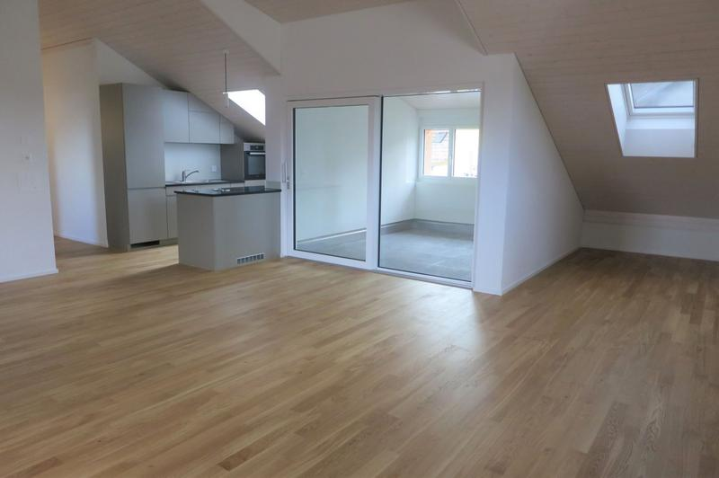 Erstvermietung - attraktive 4.5-Zimmer-Dachwohnung mit Wintergarten (1)