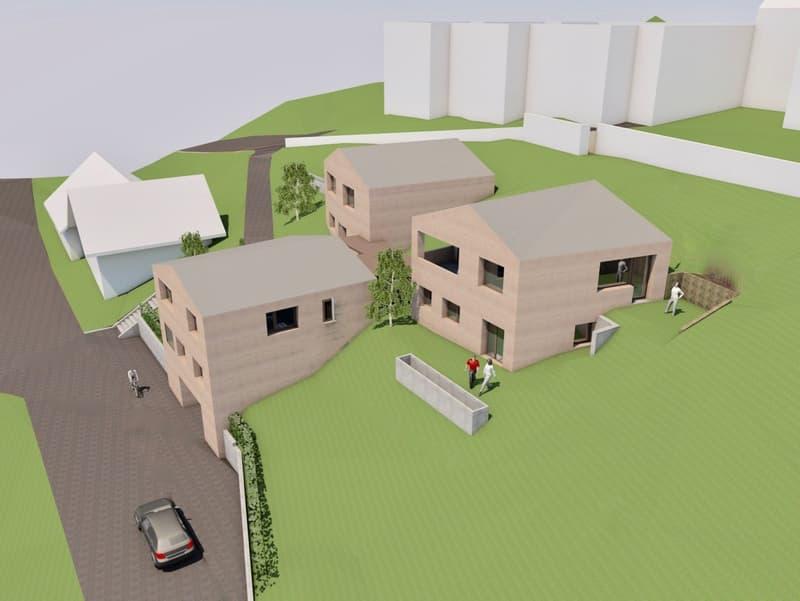 Neubau - Einfamilienhaus mit bester Besonnung (1)