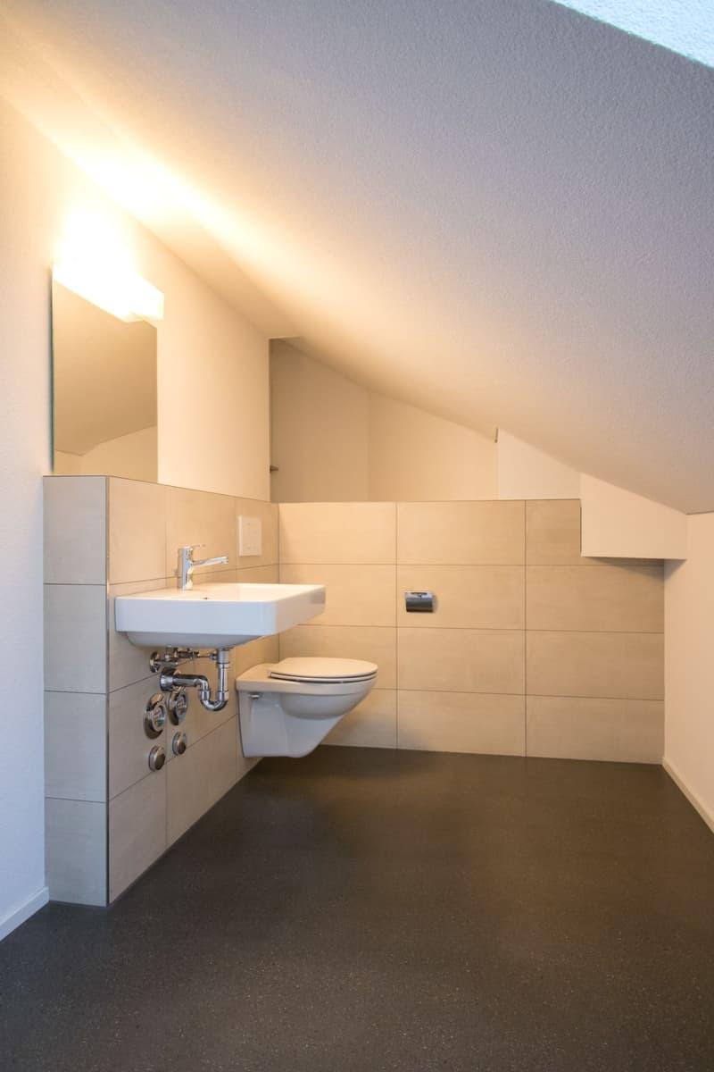 komplett sanierte Loft-Dachwohnung (8)
