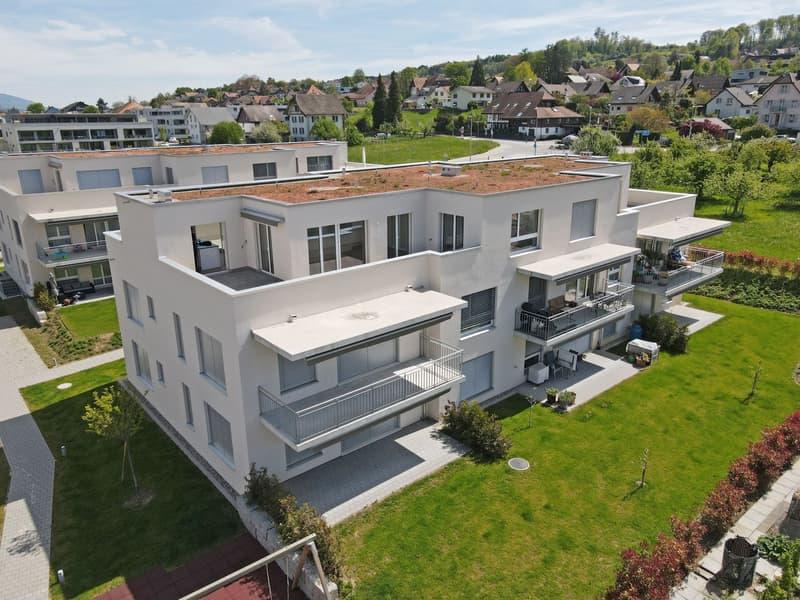 Attraktive Attika-Wohnung mit Weitsicht (1)