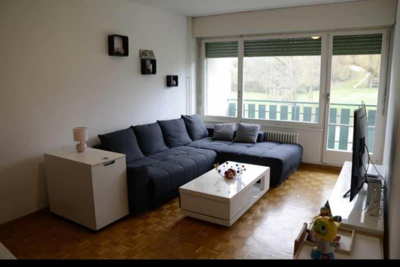 Bel appartement de 4 pièces à Bernex (1)