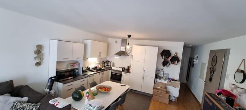 Magnifique appartement 4 pièces à Cointrin (1)