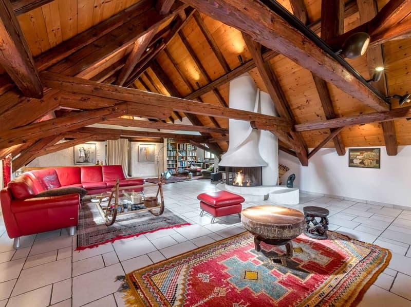 Magnifique salon avec cheminée