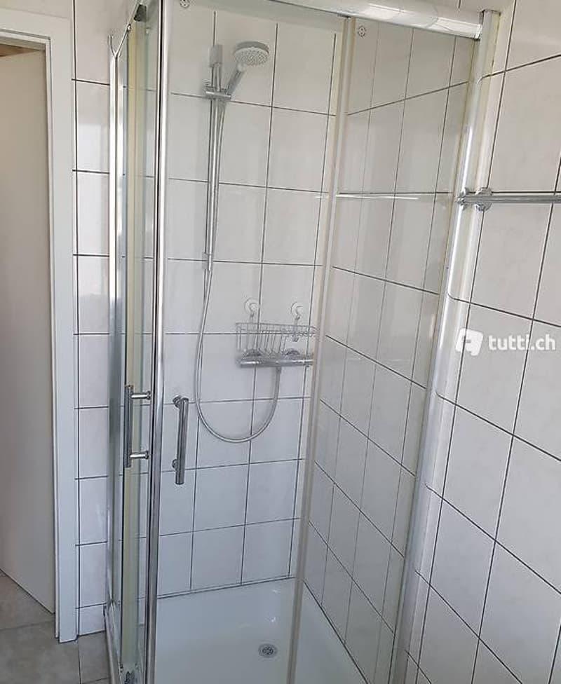 Zu vermieten in 4446 Buckten BL. Renovierte 2 Z.Wohnung (5)