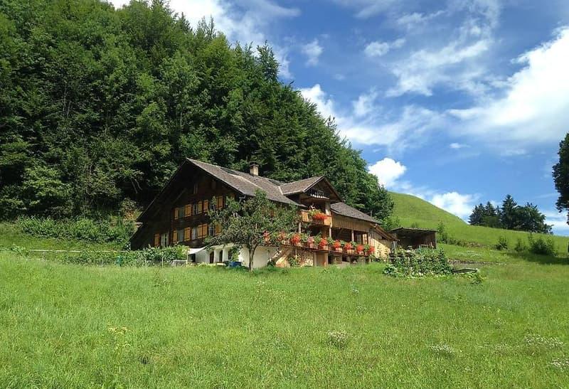 Berner Oberland / 3.5 Zi-Wohnung in Bauernhaus (1)