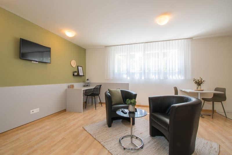 Studio Apartment - möbliert (2)