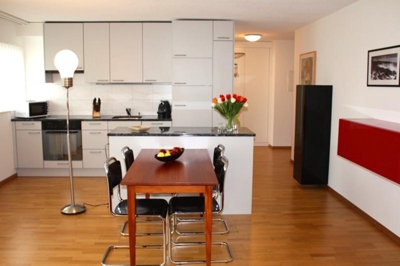 Quiet and bright spot - fully furnished and serviced 1BR apartment - Hösch 3 (1)